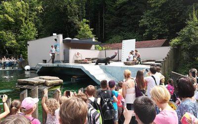 Nagrajeni učenci na ogledu živalskega vrta